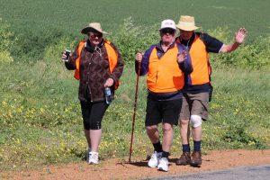 ADSA Walk 2016 Geraldton Mingenew